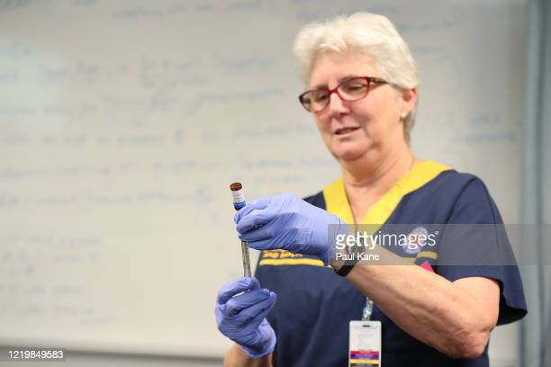 A clinical staff member draws vaccine from a BCG vial in the trial clinic at Sir Charles Gairdner hospital on April 20 2020 in Perth Australia...
