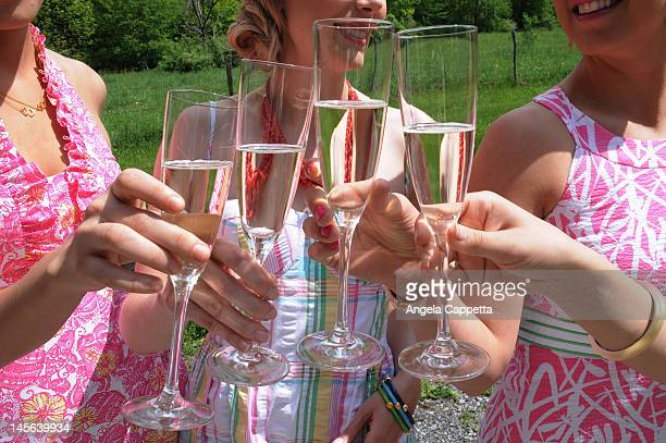 clinking glasses - prosecco stock pictures, royalty-free photos & images