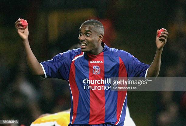 Clinton Morrison of Crystal Palace shows his disdain as the crowd throw paper onto the pitch during the CocaCola Championship match between Crystal...