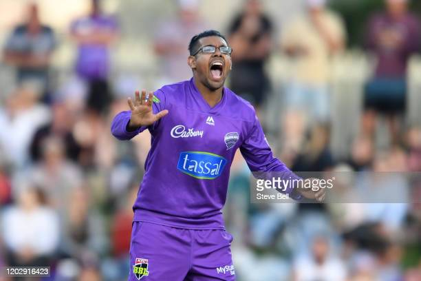 Clive Rose of the Hurricanes appeals during the Big Bash League eliminator finals match between the Hobart Hurricanes and the Sydney Thunder at...