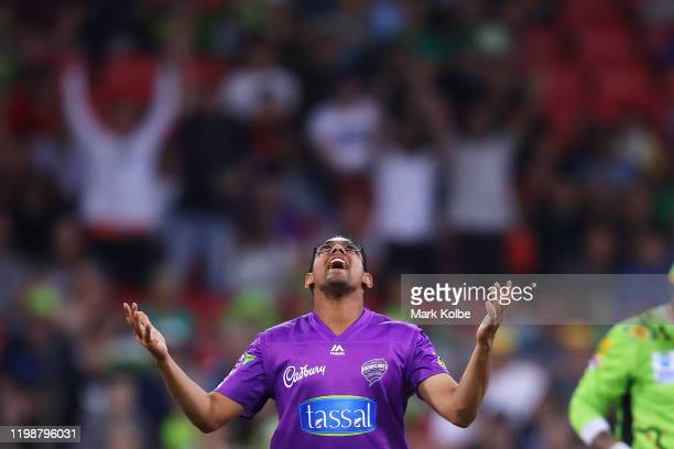 Clive Rose of the Hurricanes celebrates taking the wicket of Alex Hales of the Thunder during the Big Bash League match between the Sydney Thunder...