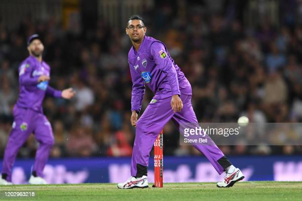 Clive Rose of the Hurricanes watches on after a midfield during the Big Bash League eliminator finals match between the Hobart Hurricanes and the...