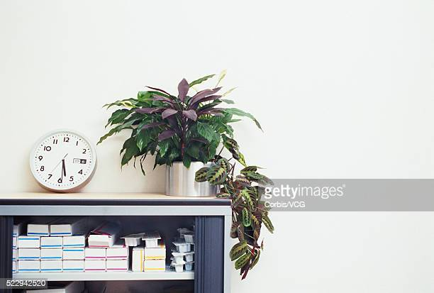 clock and plant on top of cabinet - vcg stock pictures, royalty-free photos & images