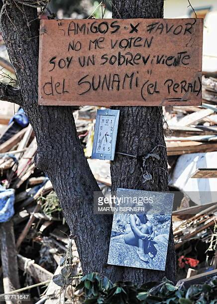 Clock stopped at the time of the earthquake and a photograph of a survivor hang from a tree in Constitucion, some 300 km south of Santiago, March 4,...