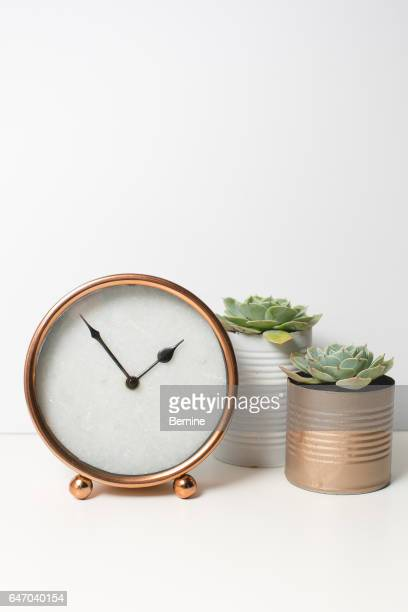 Clock with Succulents