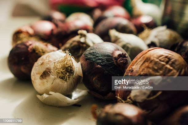 close image of raw onions in cellar. some are rotten. - rot stock pictures, royalty-free photos & images