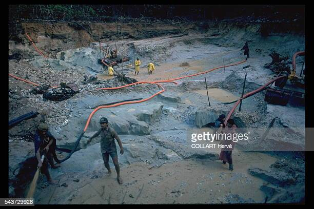 Close on 40000 men trample the goldbearing mud of the illicit mines opened in Roraima in the heart of Yanomami territory