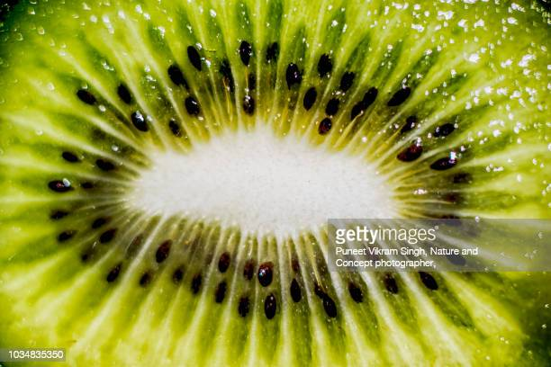 close up abstract shot of kiwifruit or chinese gooseberry - juicy stock pictures, royalty-free photos & images