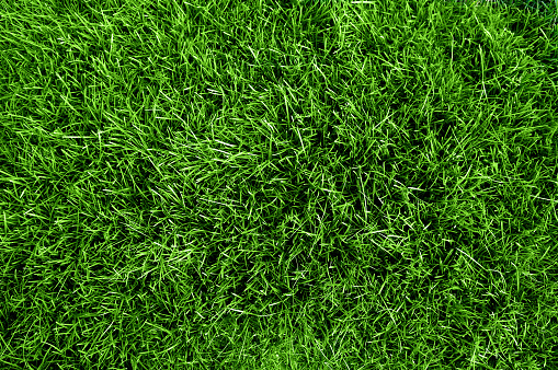 Close up aerial view of the grass on a soccer field  93269460