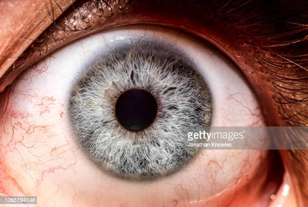 close up blue iris of human eye - extreme close up stock pictures, royalty-free photos & images
