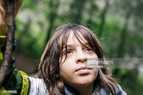 close up boy looking up with wet hair at forest - petaluma stock pictures, royalty-free photos & images
