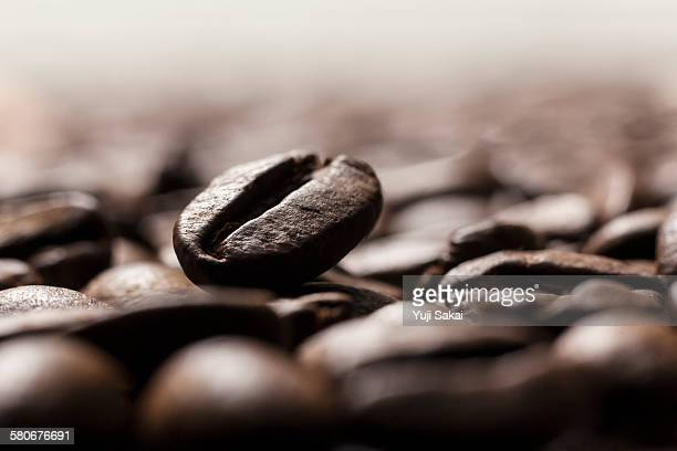 close up coffee bean