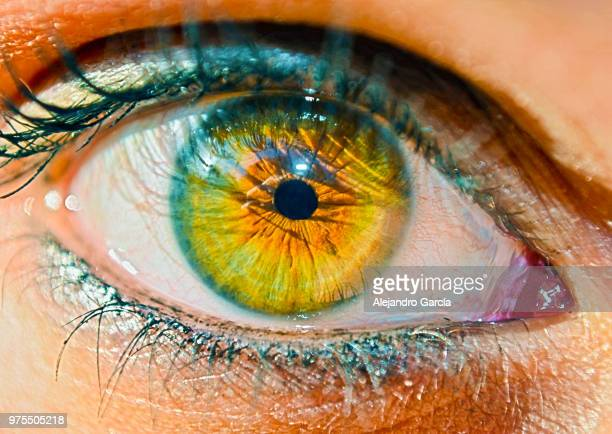 close up eye - cirrhosis stock pictures, royalty-free photos & images