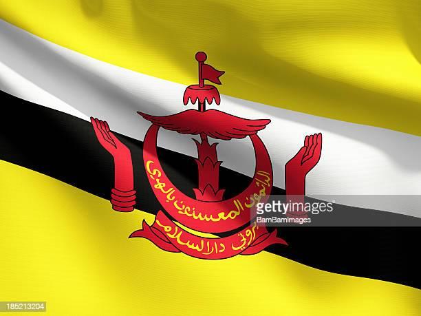 Close Up Flag - Brunei