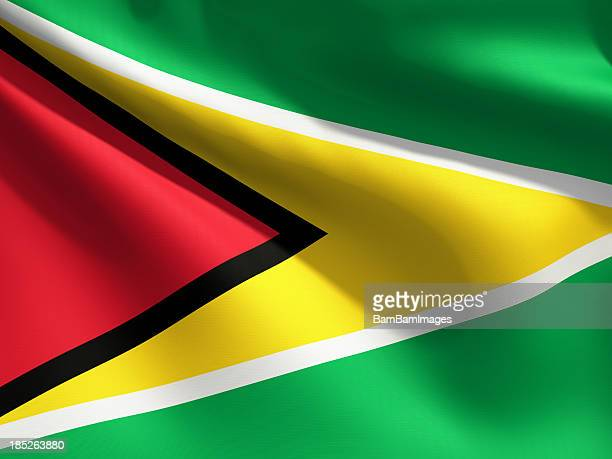 close up flag - guyana - guyana stock pictures, royalty-free photos & images