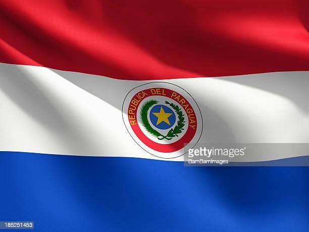 gros plan de drapeau du paraguay - paraguay photos et images de collection