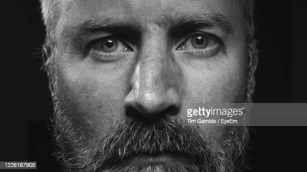 close up head shot portrait man black and white bear grey hair - eye stock pictures, royalty-free photos & images