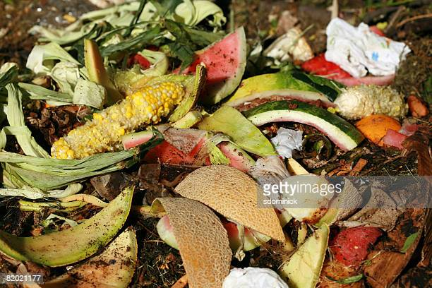 A close up image of a compost pile.