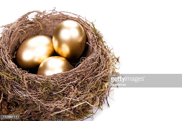 Close up of a bird's nest, with three shiny golden eggs
