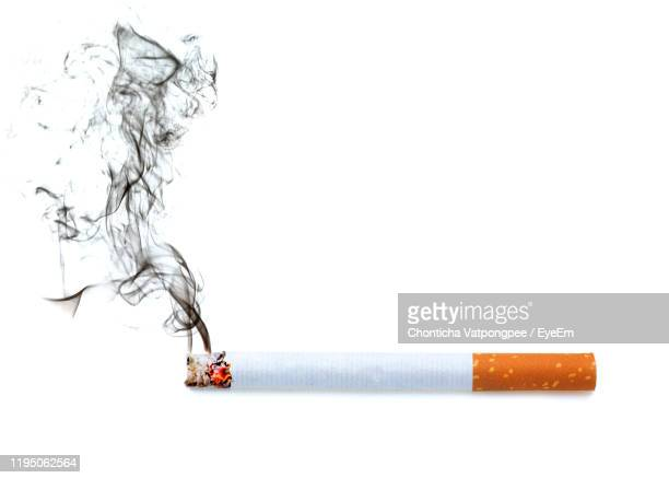 close up of a cigarette with smoke showing at white background - cigarette stock pictures, royalty-free photos & images