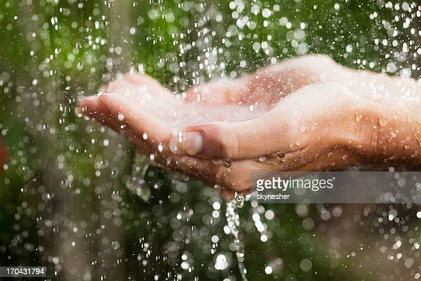 Close up of a hands on tropical rain.