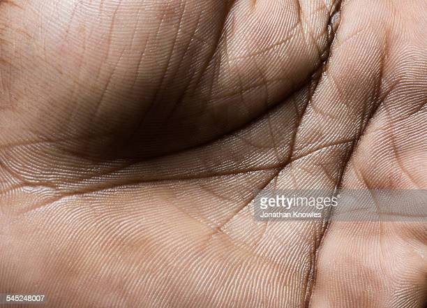 close up of a human hand - close up stock pictures, royalty-free photos & images