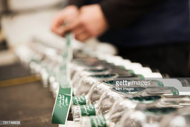 Close up of a man labeling glass bottles in a beer brewery or distillery.