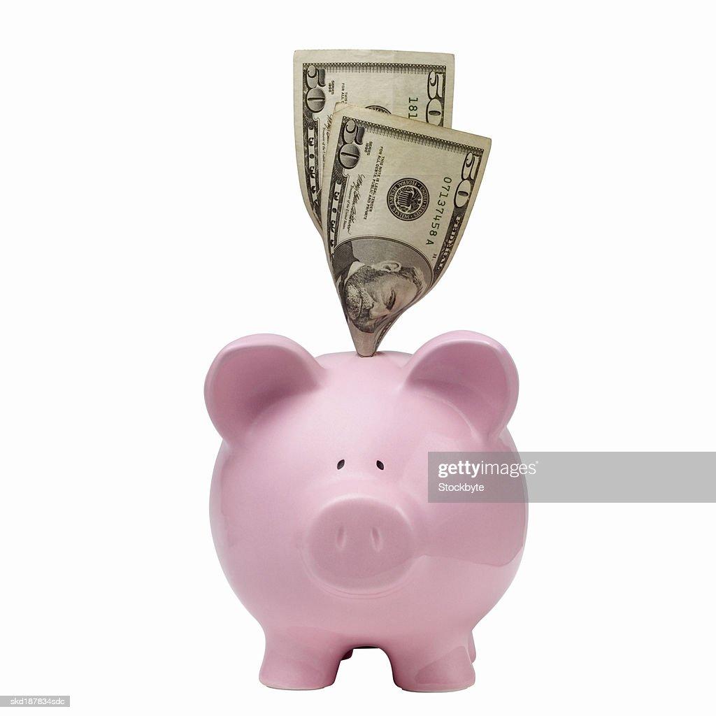 Close up of a piggybank and  50 dollar notes : Stock Photo