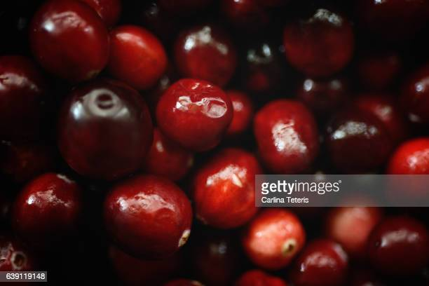 Close up of a pile of cranberries