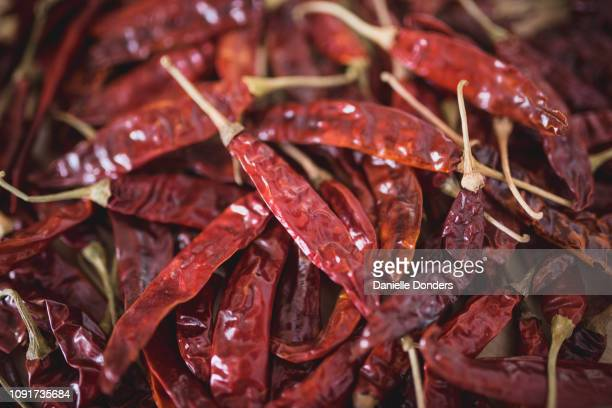 "close up of a pile of dried red chili peppers - ""danielle donders"" stock pictures, royalty-free photos & images"
