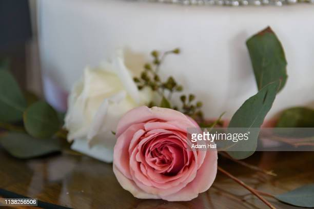 close up of a pink and white rose flowers by a wedding cake on a stand with leaves - utah wedding stock pictures, royalty-free photos & images
