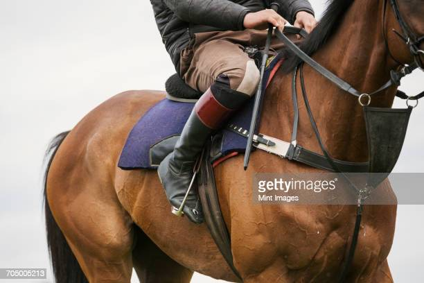 close up of a rider wearing black riding boots riding a bay racehorse with short stirrups. - thoroughbred horse - fotografias e filmes do acervo