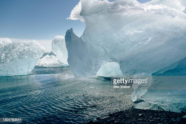 close up of a small icebergs on a black sand beach - jökulsárlón lagoon stock pictures, royalty-free photos & images