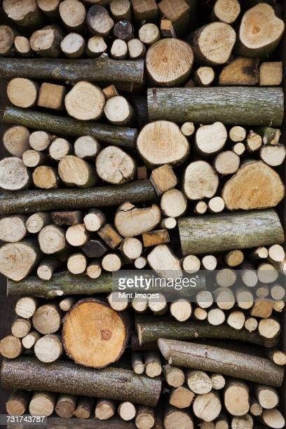 Close up of a stack of wooden logs and twigs, a log store.