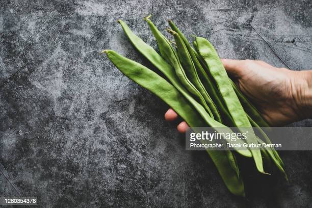 close up of a woman's hand, holding a bunch of green vegetables, fresh, organic green beans - bottes bigarrées photos et images de collection