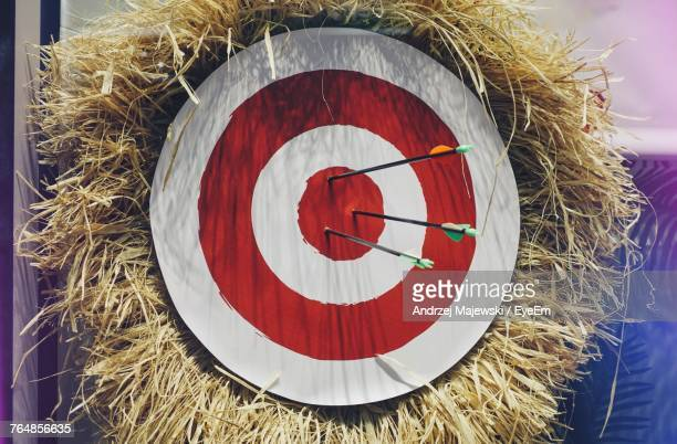 Close Up Of Arrows On Target Over Bale