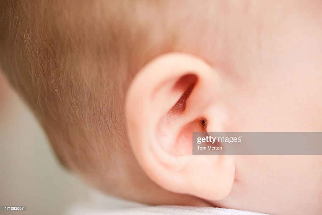 Close up of baby's ear : Stock Photo