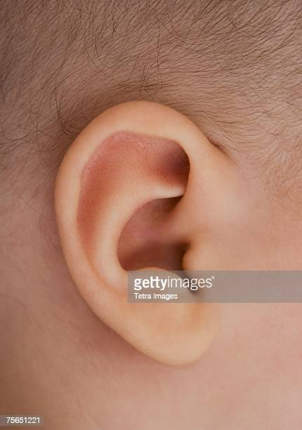 close up of baby's ear - earlobe stock photos and pictures