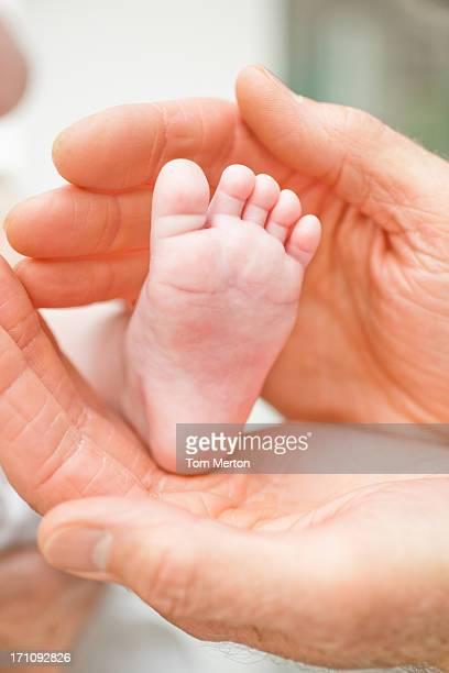 Primer plano de bebé ' s cuadrados en abuelo ' s hands