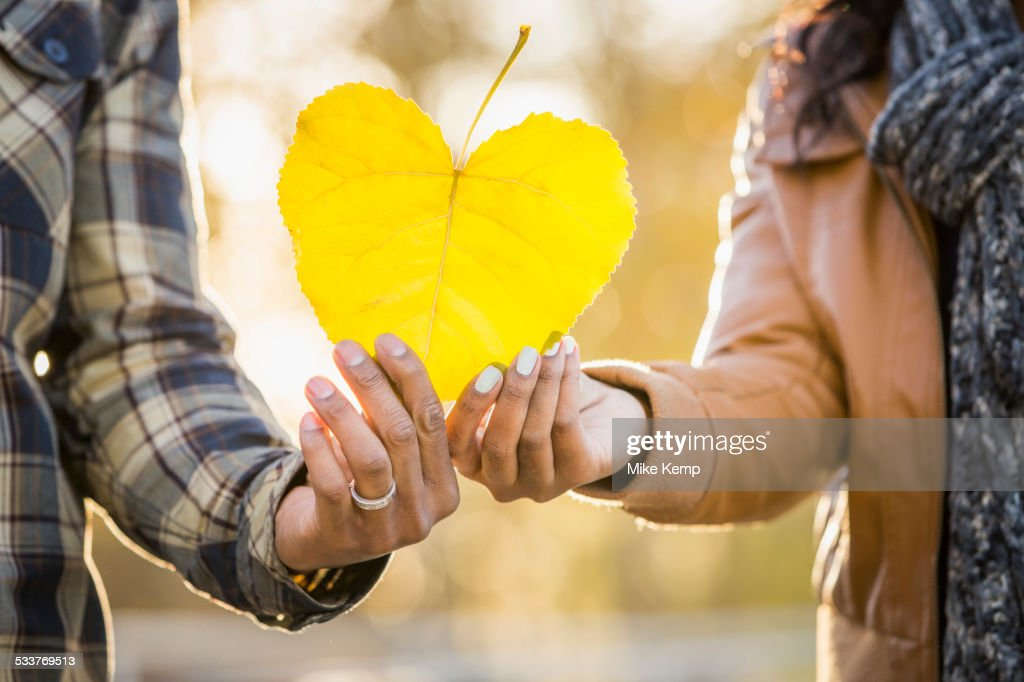 Close up of Black couple holding heart shaped leaf : Foto stock
