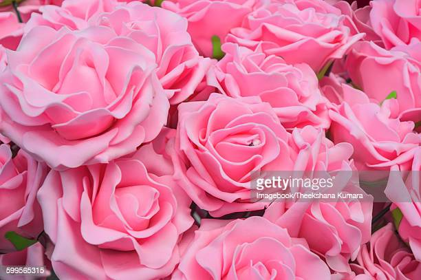 Close up of blooming pink roses in bouquet