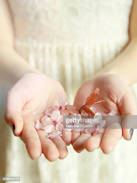 Close Up Of Blossoms On Womans Hands