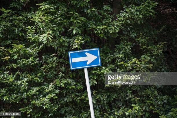close up of blue direction sign isolated on green background - 道路標識 ストックフォトと画像