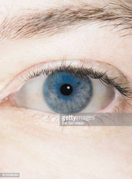 close up of blue eye-series