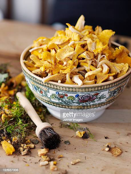 Close up of bowl full of chanterelles