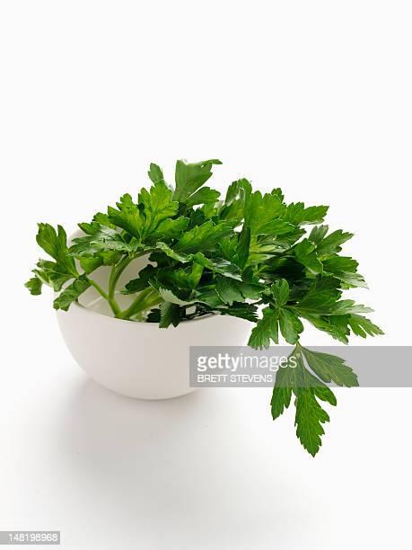 close up of bowl of parsley - peterselie stockfoto's en -beelden