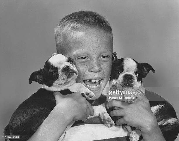 close up of boy holding puppies - pawed mammal stock pictures, royalty-free photos & images
