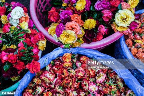 Close up of buckets of flowers for sale in market