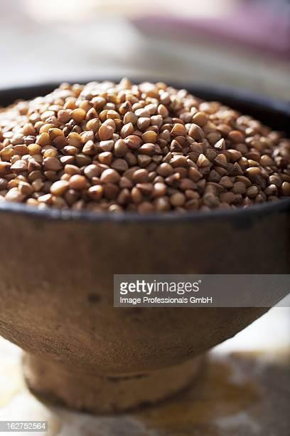 Close up of buckwheat