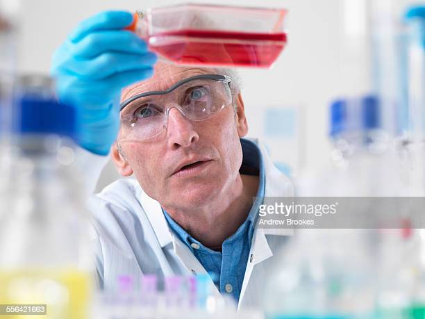 Close up of cell biologist holding a flask containing stem cells
